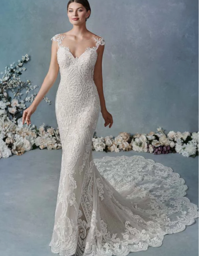 Corded Alencon Lace:Embroidered Cotton Lace:Sequined Tulle:English Net:Stretch Lining 82