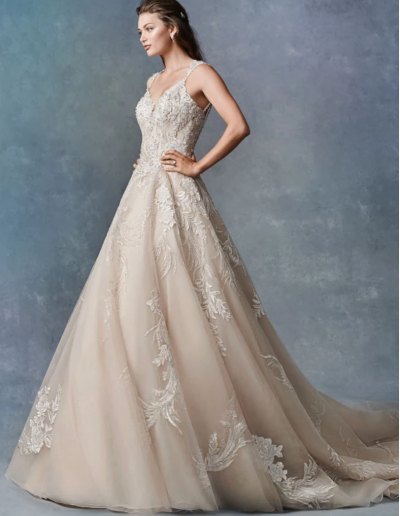 Embroidered Lace:Sparkle Tulle:English Net:Organza 75